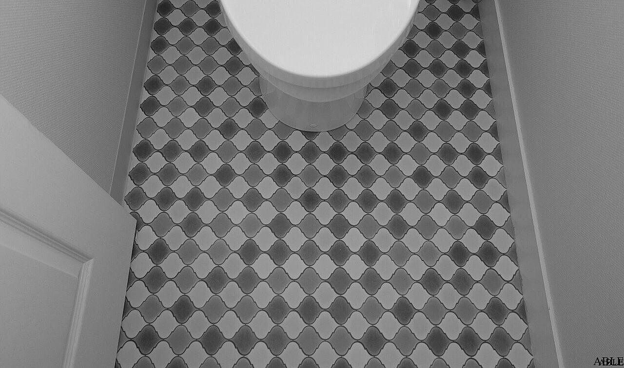「フチなしトイレ」へ買い換える時の注意点!