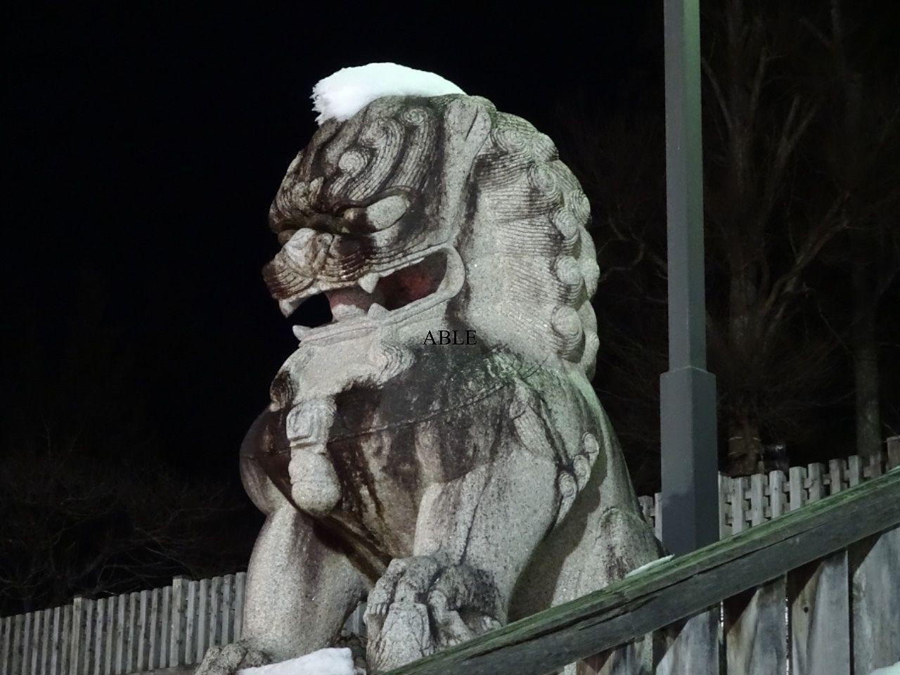 小正月の夜『どんと祭』