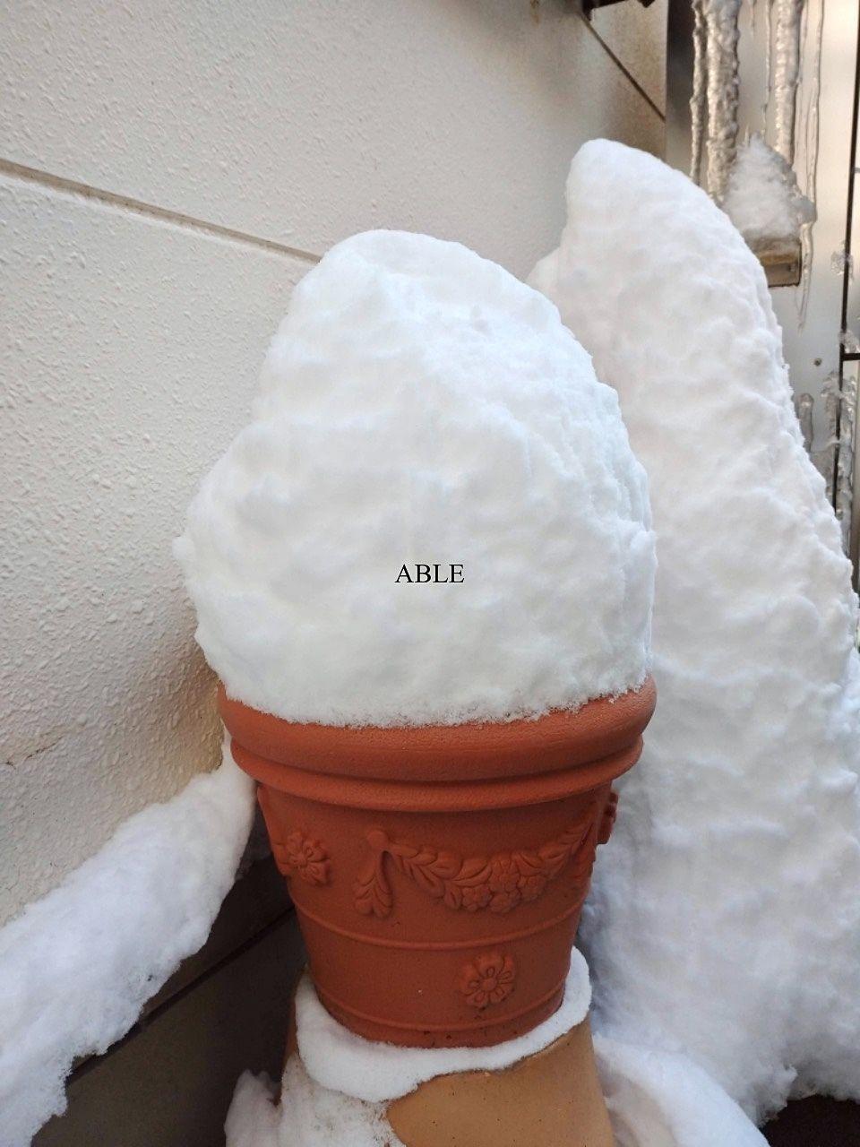 積雪の多い日のお部屋探し