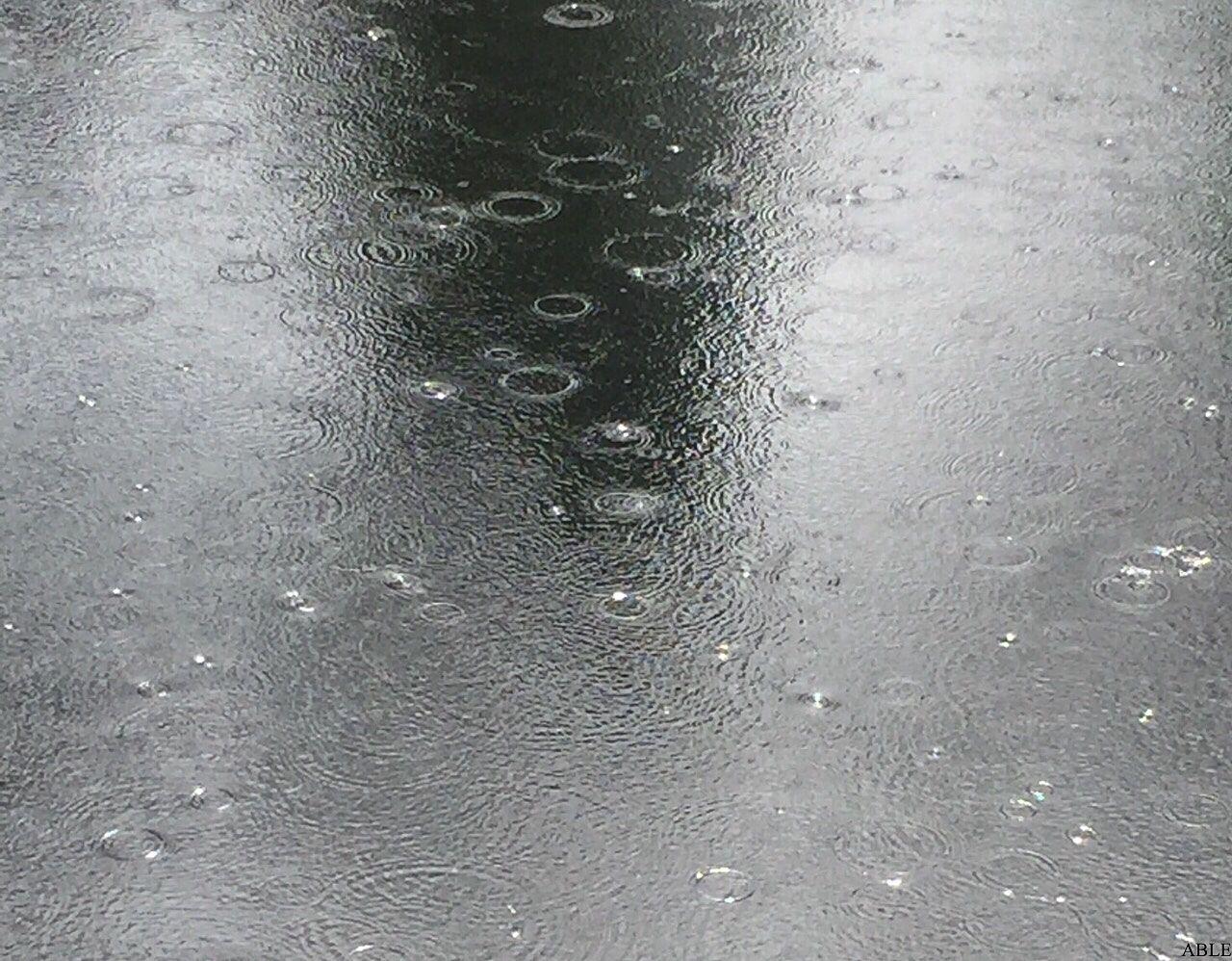 小雨の日の外掃除は楽⁈